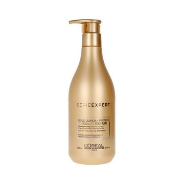 Herstellende Shampoo Absolut L'Oreal Expert Professionnel